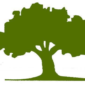 city tree color